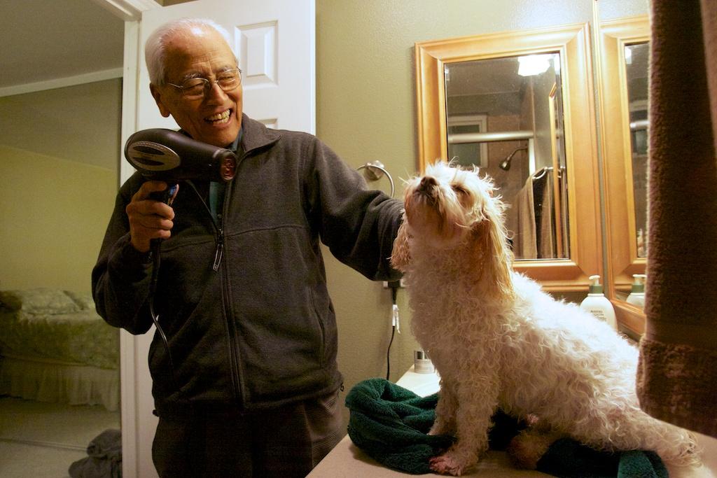 Grandpa Groomer